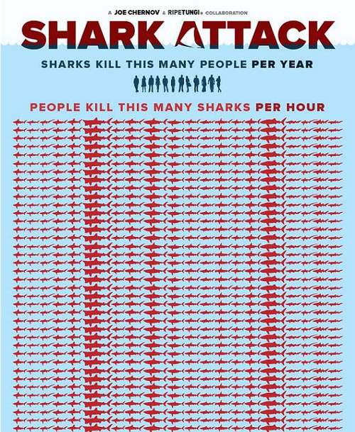 shark info graph top